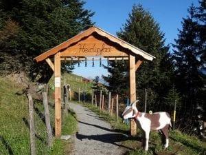 Kneippanlage und Barfussweg - Besuch der Wassertretanlage Pizol in Bad Ragaz