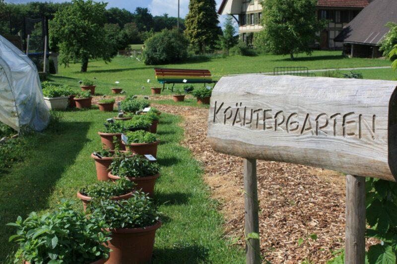 Kräutergarten Berchtoldshof