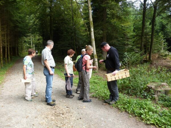 Kneippverein Muri-Freiamt Event - Pilzwanderung und Gourmet kochen
