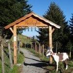Kneippanlage und Barfussweg Bad Ragaz Pardiel 001